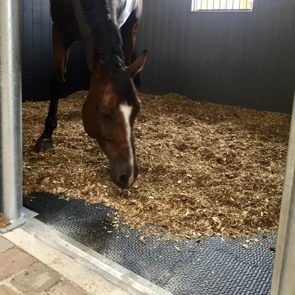 tapis caoutchouc chevaux k16 ekeep
