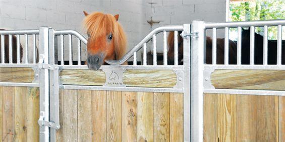 box poney