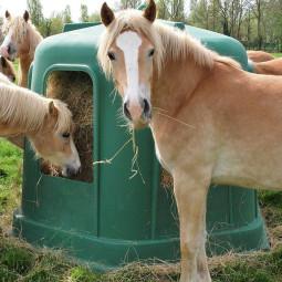 Cloche à foin avec fond La Gée pour chevaux - EKEEP