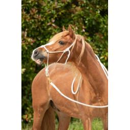 Licol et longe d'équitation éthologique blanche 3,70m